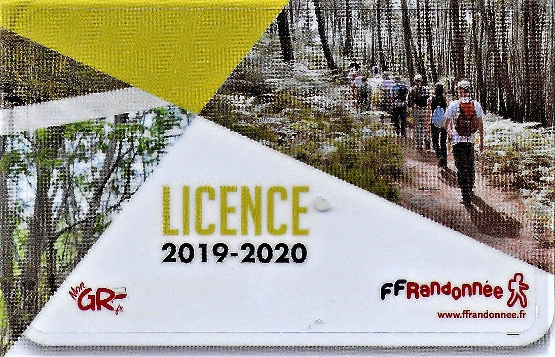 Licence 2020